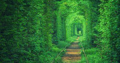 Дивовижні місця України