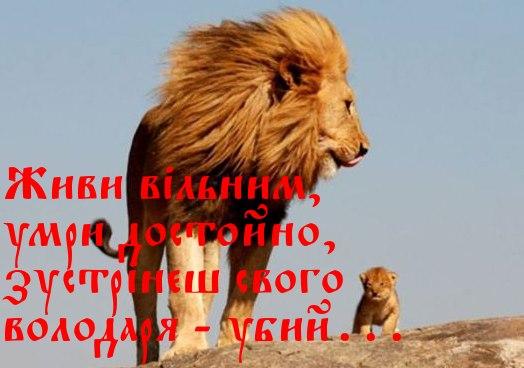 """""""Я знаю грамоту свободи – її підписують мечі!"""" Ліна Костенко. А якщо меч занадто важкий – стань сильнішим!"""