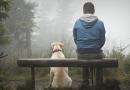 12 способів змінити життя для тих, у кого зовсім немає сил