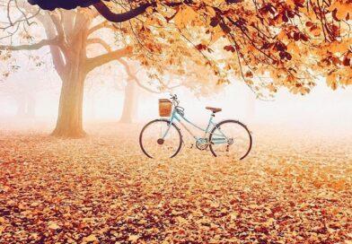 Золота осінь. Час роздумів, час мудрості…